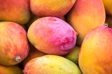 Backround of new harvest mango for sale at city market