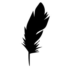 vector isolated black silhouette bird feather, outline