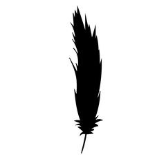 black silhouette of a feather