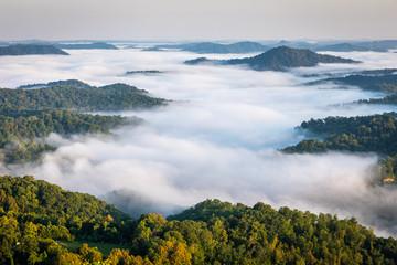 Morning Fog in Valley