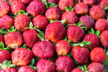 Beautiful fresh and juicy strawberries. Real fruit. Ripe strawberry texture