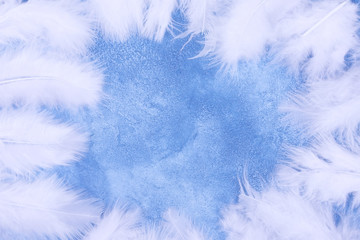 Fluffy white feathers forming a frame on a light blue marble or concrete background (as an abstract fairy-like fantastic background), copy space in the center for your text