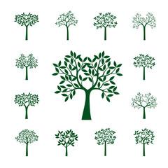 Set of green Trees. Vector Illustration.