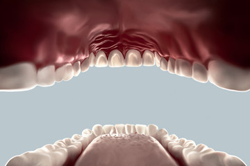 human mouth open view from the inside looking out, teeth, tongue isolated on white