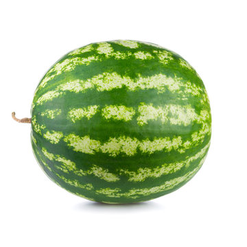 One whole green watermelon isolated on white background.