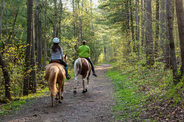 Two women horseback riding in the forest.
