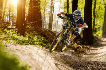 The cyclist on the downhill bike goes through the forest Fototapete