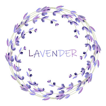 Lavender flower round frame on white. Vector packaging design template and emblem - beauty and cosmetic oil - lavender.