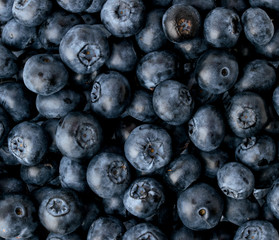 Background of ripe blueberries, top view.