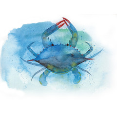 Watercolor Blue crab