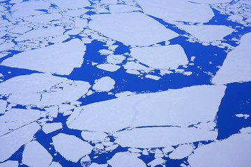 Ice floe and icebergs floating in the Davis Strait in the Labrador Sea off of Greenland