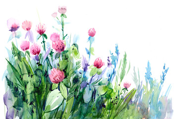 Watercolor background with flowers, leaves and herb. Hand drawn illustration