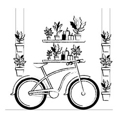 shelf with houseplants and bicycle scene vector illustration design