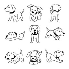 Set of vector cartoon character labrador dog poses