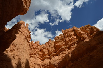 Navarro Reserve and Bryce canyon
