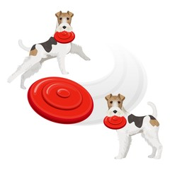 Funny fox terrier dog with red frisbee in teeth
