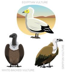 Bird Old World Vulture Set Cartoon Vector Illustration