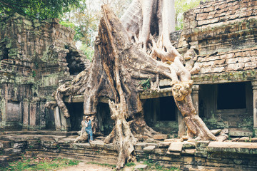 Girl tourist rests at the ruins of the ancient city of Angkor Wat among the trees with huge roots.Trees in Ta Phrom Temple in the ancient city of Angkor Wat, Cambodia.A fascinating journey to Cambodia