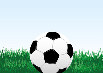 Soccer ball and green grass on a blue background.
