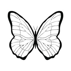 Graphic symbol butterfly. Isolated black sign on white background. Vector illustration
