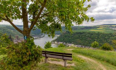Rheinsteig hiking trail at sankt Goarshausen Rhine Valley landscape