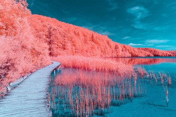 Plitvice Lakes National Park - Infrared