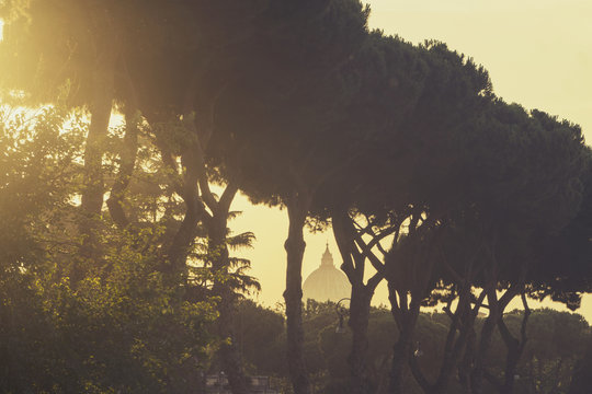 View of St Peter's Basillica through trees at sunset in Rome