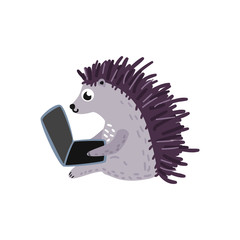 Cheerful hedgehog kid animal sitting typing at laptop lying at his knees. Cute pets characters and modern computer technologies and communication. Vector cartoon illustration