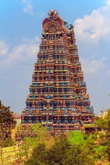 The famous temple of Meenakshi.
