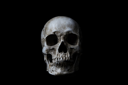 Human skull on black background