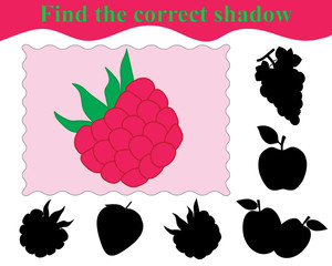 Educational game for children. Find the correct shadow of raspberry. Vector illustration.