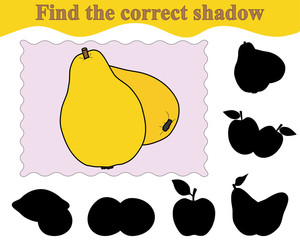 Find the correct shadow of quinces. Education. Game for children. Vector illustration.