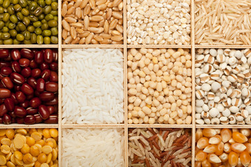 Different types of grains and beans