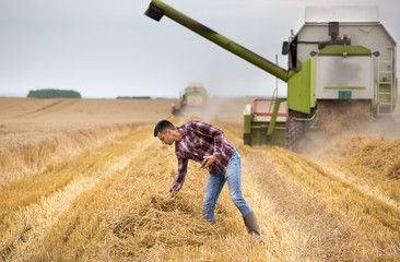 Farmer with tablet in field during harvest