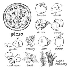 Pizza and ingredients vector set, hand drawn food set isolated on white background: pizza, tomato, cheese, shrimp, onion, garlic, parsley, ham, pepper, champignon, herbs