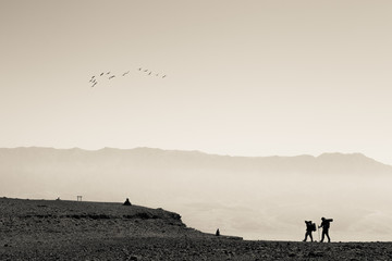 Storks flock birds above desert landscape.