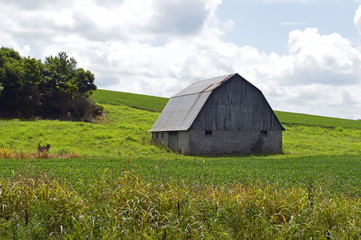 Rural landscape photo of an old barn in the countryside