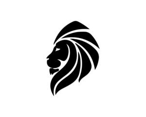lion 13