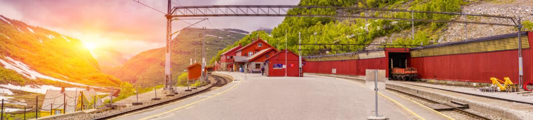 Aluminium Prints Train Station Myrdal Station, Norwegian Flam Railway Mountain train a tourist travel destination Europe