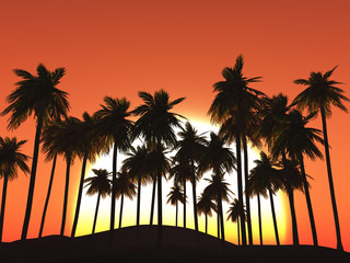 3D palm trees against a sunset sky