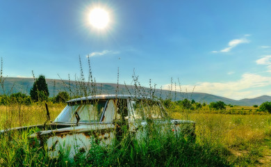 An abandoned vintage automobile, rotting on the hot sun in the field