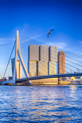 Acrylic Prints Rotterdam Famous Travel Destinations. Attractive View of Renowned Erasmusbrug (Swan Bridge) in Rotterdam in front of Port and Harbour. Picture Made Before the Sunset.