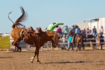 Cowboy Riding A Bucking Bronc Horse At A Country Rodeo
