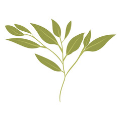 branch with leafs ecology icon vector illustration design