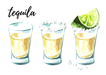 Serving tequila with salt and lime. Hand drawn watercolor illustration, isolated on white background