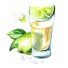 Tequila shot with fresh green lime and salt. Hand drawn watercolor  illustration isolated on white background