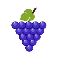 Icon of a bunch of blue grapes with a leaf