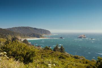 Highway 101 Views of False Klamath Cove California