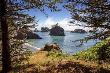 Secret Beach Rock Lookout Natural Framing by Trees   Oregon Coast, Brookings.