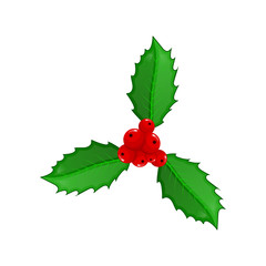 Cute cartoon leaves and berries of Holly isolated on white background. Christmas template. Vector illustration.